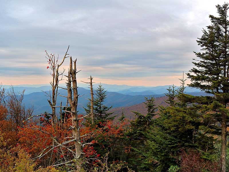 Scenic Vista from atop Clingman